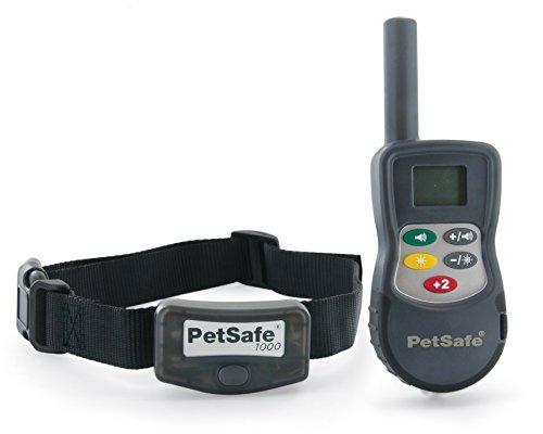 Le collier électrique ou collier de dressage pour chien