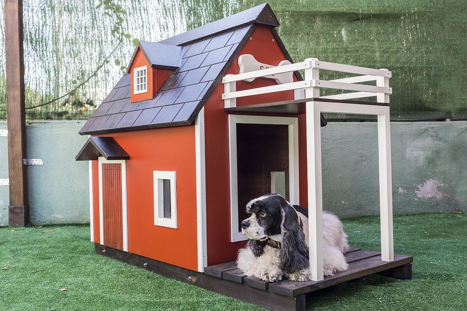 Comment choisir sa niche pour chien ?